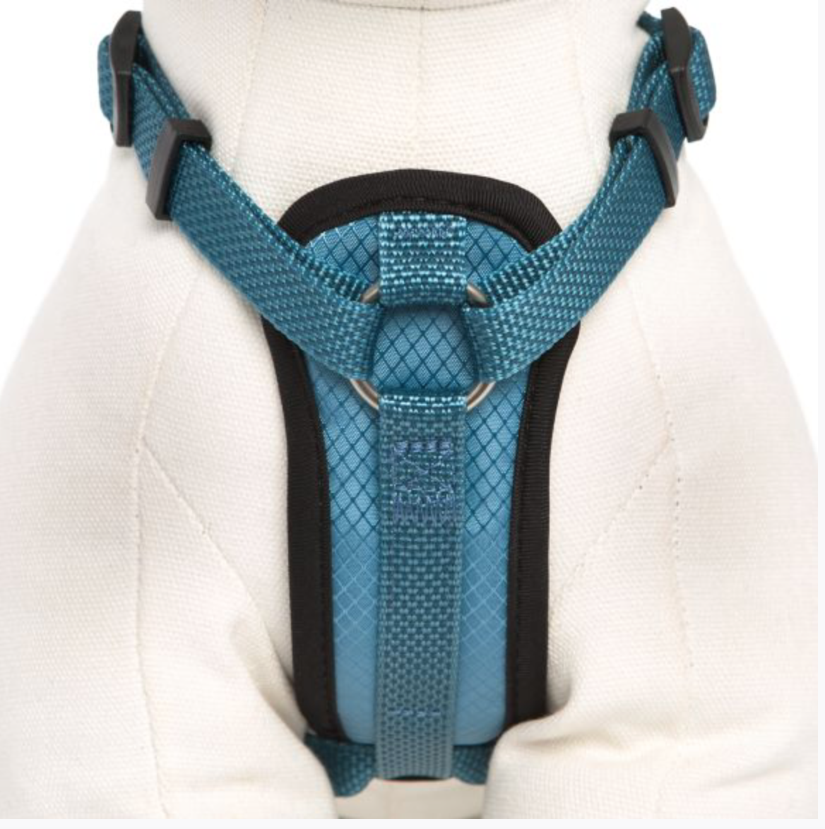 KONG Comfort Control Grip Padded Chest Plate Harness – Knockout Pet