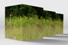 Load image into Gallery viewer, Reunited  Sandhill Cranes