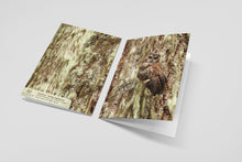 Load image into Gallery viewer, Vanishing - Northern Spotted Owl