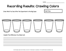 Load image into Gallery viewer, Crawling Colors Science Experiment: Capillary Action Color Mixing - Printables 4 Learning