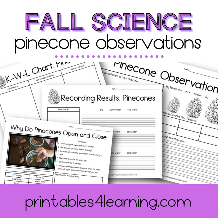 Pinecone Observation Science Experiment: Why Do Pinecones Open and Close?