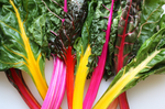 Rainbow Swiss Chard - By Leaf Sweets