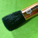 Face Forward Brush Bundle