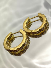 Load image into Gallery viewer, Tierra Loop Earrings