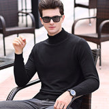 MRMT 2020 Brand New Autumn Winter Men's Turtleneck Sweater Thin Knitted Sweater for Male Pure Color Tops Sweater