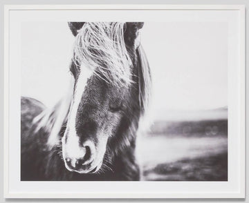 Black and White Beauty Framed Photograph