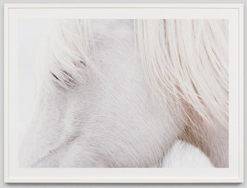 Cheval Blanc Framed Photograph