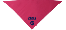 Load image into Gallery viewer, Oval Pawffice COTUS Kitty Bandana - 6 colors