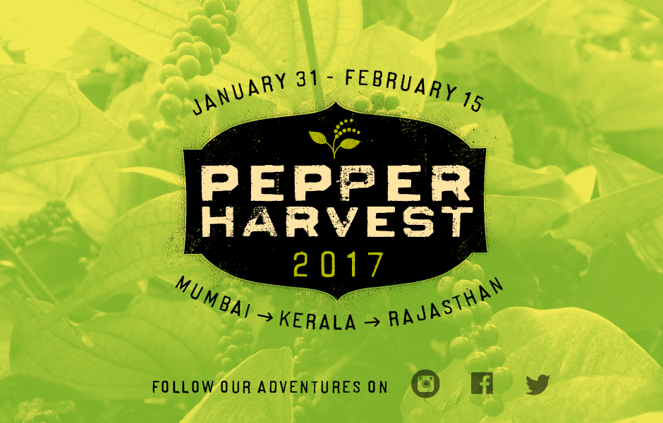 Pepper Podcast #1 • Upcoming India Trip to See the Pepper Harvest