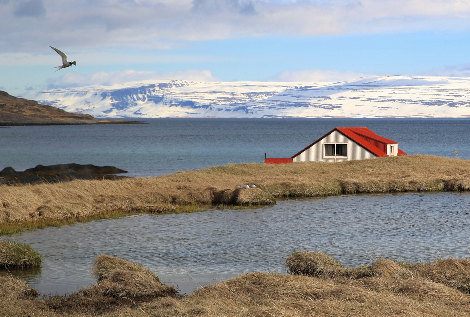 Sigh. Where Icelandic Sea Salt is Harvested.
