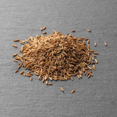 Caraway Seed Fresh Direct India