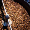 Monsoon Moon Indian Whole Bean Peaberry Coffee, Karnataka, India