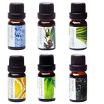 Essential Oils Gift Set - 6 Pack - scents