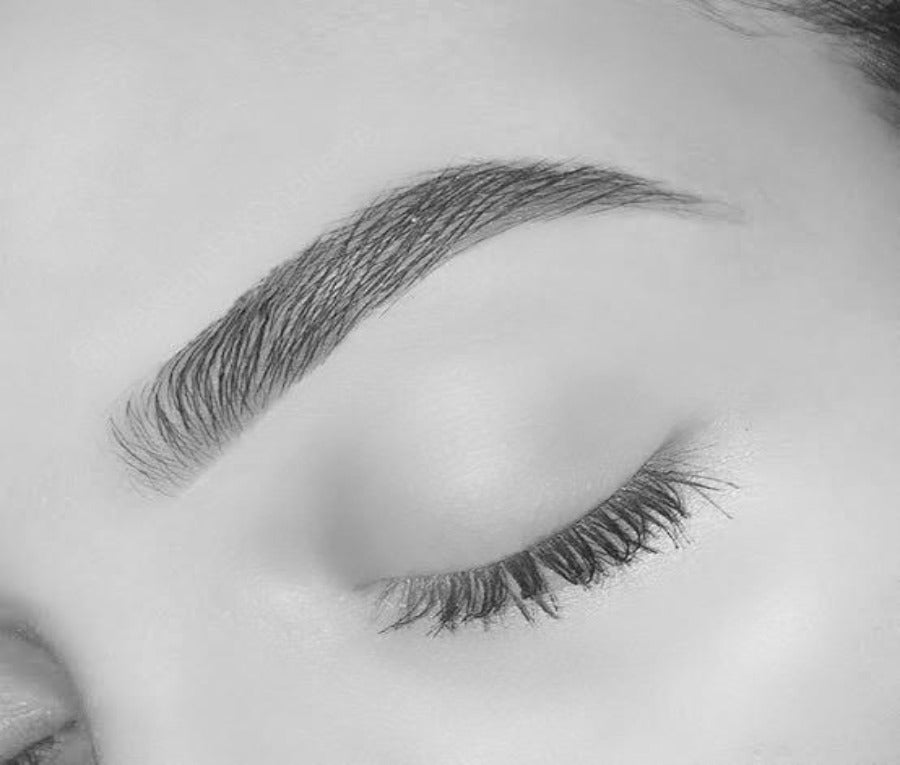 The Ultimate Brow Masterclass - Lash X Artistry
