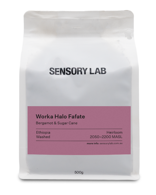 Single Origin Worka Halo Fafete Washed