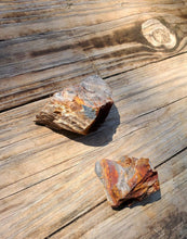 Load image into Gallery viewer, Petrified Wood stone - Natural and Organic- Ethically sourced- Blue crystal