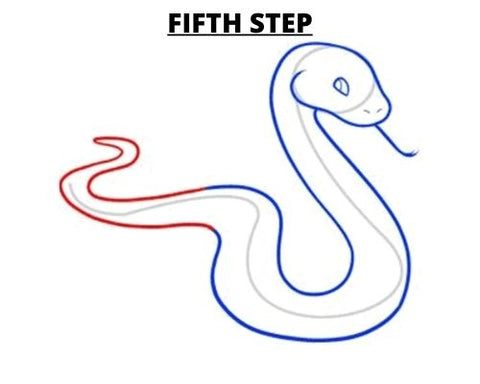 How To Draw A Snake Fifth Step