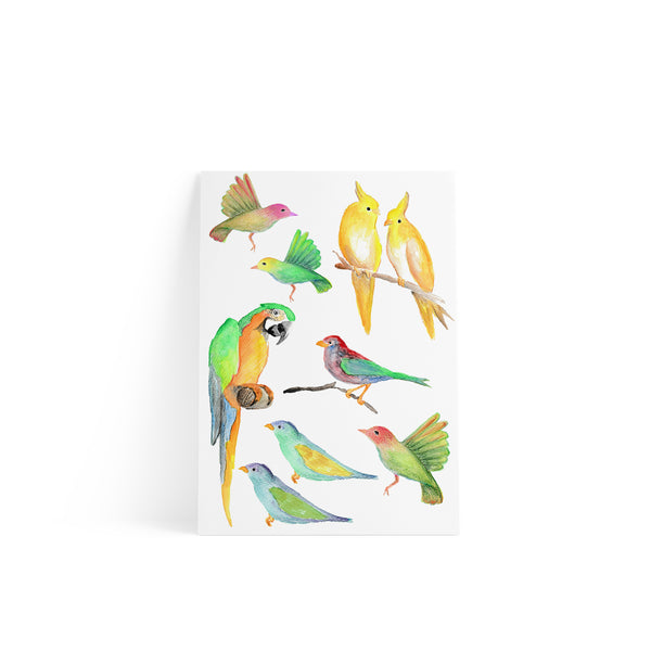 Birds Sticker A4