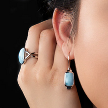 Load image into Gallery viewer, Brie Larimar Earrings