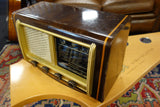 Savica 65a type Ra 15a Radio Amp by Mustangamps 220 volt version