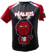 Olorun Men's Mini Dragon Wales Rugby Shirt Faletau (Fast Delivery)