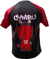 Olorun Men's Mini Dragon Wales Rugby Shirt Roberts (Fast Delivery)