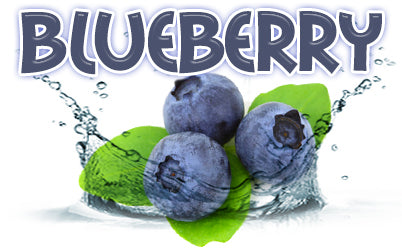 100ML Blueberry e-liquid - SPECIAL PRICE