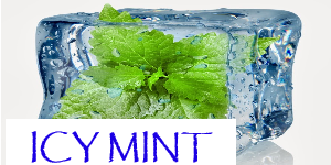 ICY MINT UP TO 50ML NIC SALT