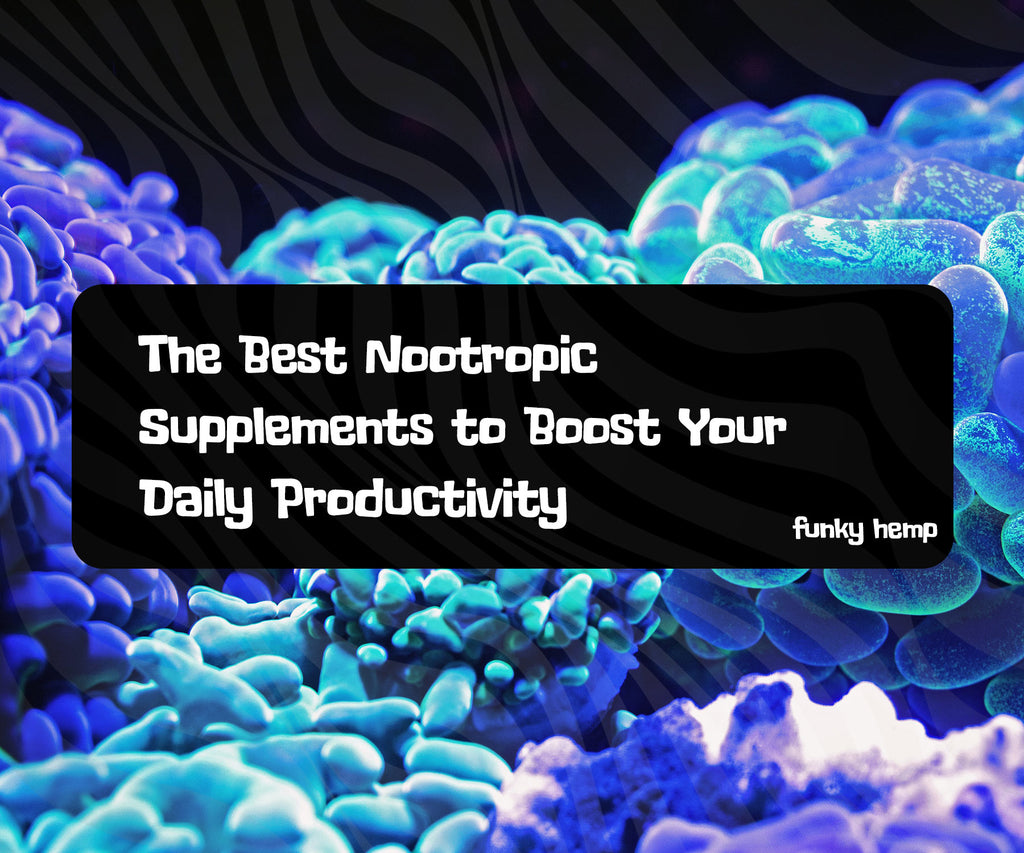 The Best Nootropic Supplements to Boost Your Daily Productivity