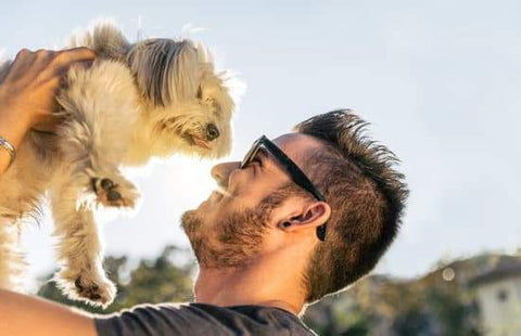 Happy Man holding up small well behaved dog