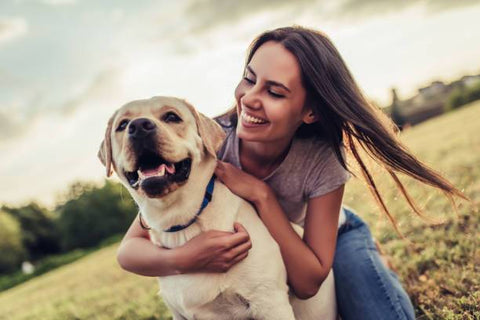 Lady spending time with well behaved labrador dog