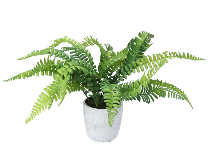 Potted Plant 29cm - Faux Boston Fern
