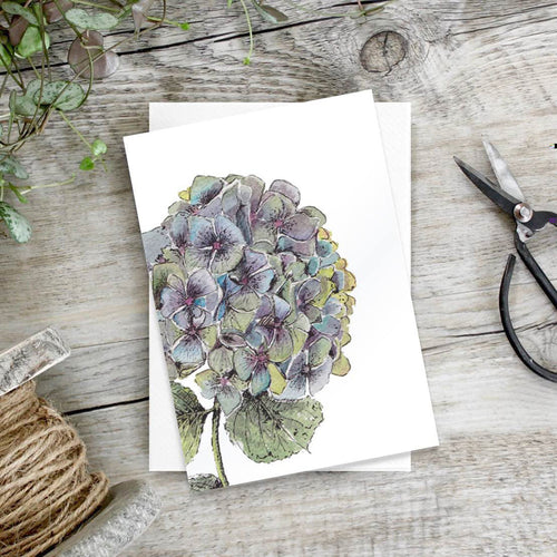 Hydrangea – Set of 6 notecards - Little Gems Interiors