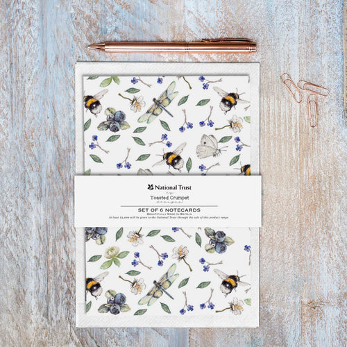 Wild Flower Meadows Pure – Set of 6 Notecards Cello-Free with Bellyband - Little Gems Interiors