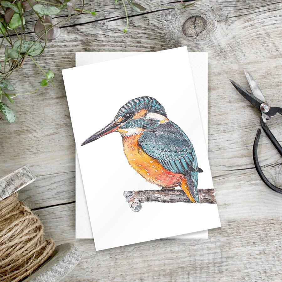 Kingfisher - set of 6 notecards
