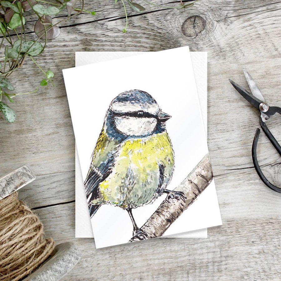 Bluetit – Set of 6 notecards