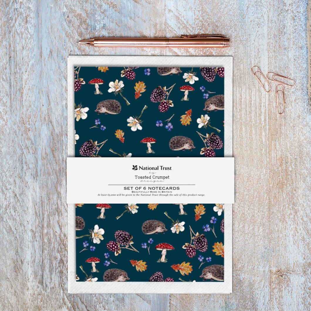 Hedgehogs Noir – Set of 6 Notecards Cello-Free with Bellyband - Little Gems Interiors