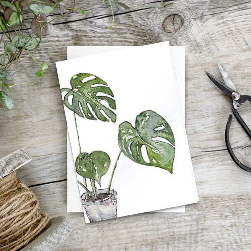 Monstera – Set of 6 notecards - Little Gems Interiors