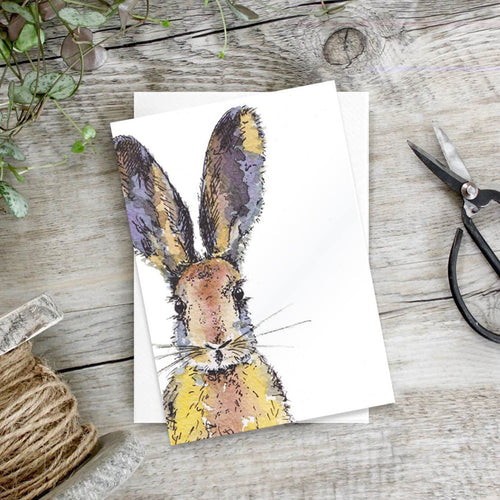 Coloured Hare - Set of 6 notecards - Little Gems Interiors
