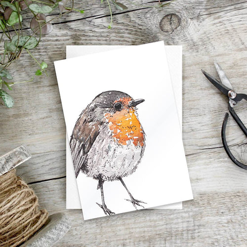 Robin Set of 6 notecards - Little Gems Interiors