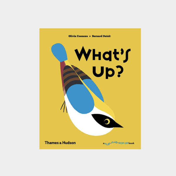 What's Up? | A Flip Flap Pop Up Book