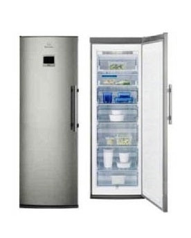 Electrolux EUF2744AOX Upright Freezer 220V