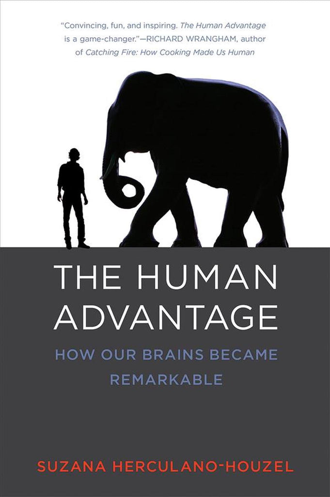 The Human Advantage: How Our Brains Became Remarkable