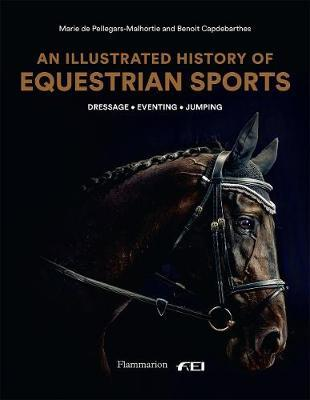 An Illustrated History of Equestrian Sports: Dressage, Jumping, Eventing