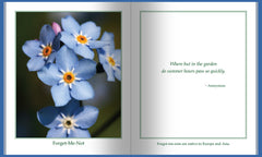 Flowers – An Activity Book for Dementia Patients