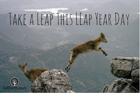 Take a leap this leap year day