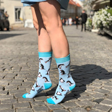 Load image into Gallery viewer, Penguin Socks — Funny Novelty Socks For Women