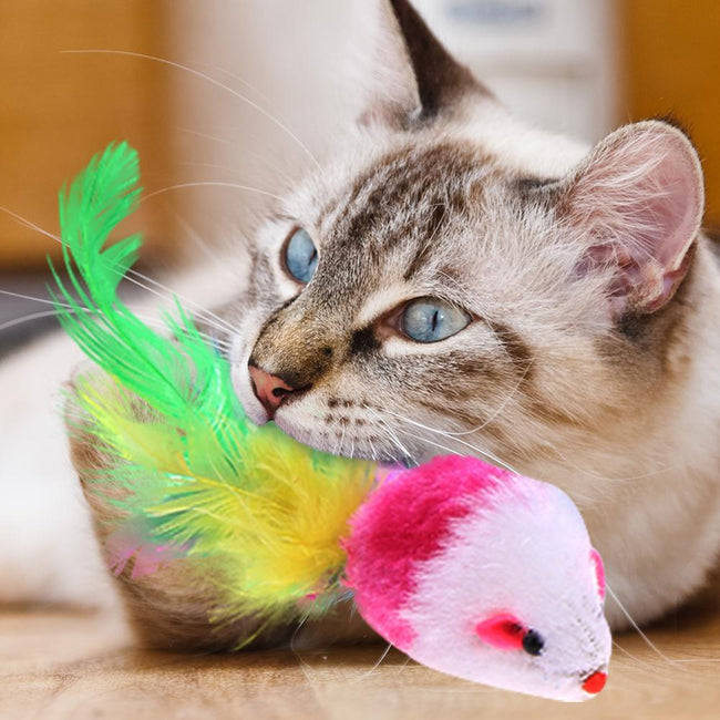 1PC Hollow Ball Feather Mouse Toys for Pet Cats & Dogs