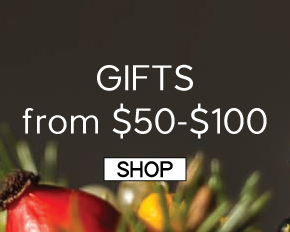 Gift Ideas from $50-100