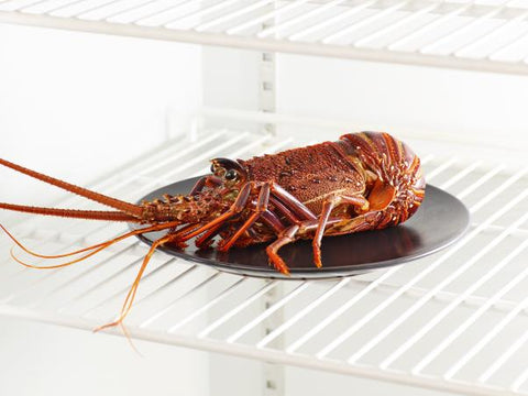 Frozen raw West Australian lobster